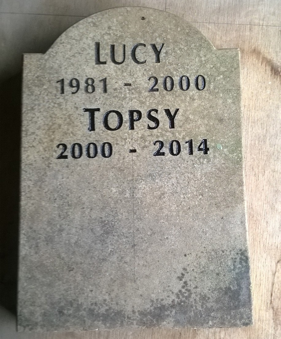 Lucy and Topsy Engraved shaped sandstone